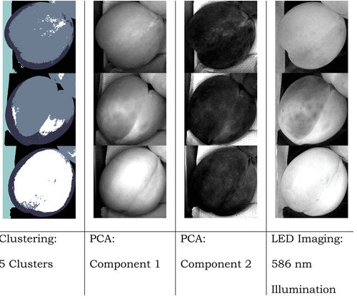 The Use of Hyperspectral Imaging in the Food and Beverage Sector - CAPPA